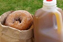 cider and donuts is a MUST have in October, while finding the perfect punkin!