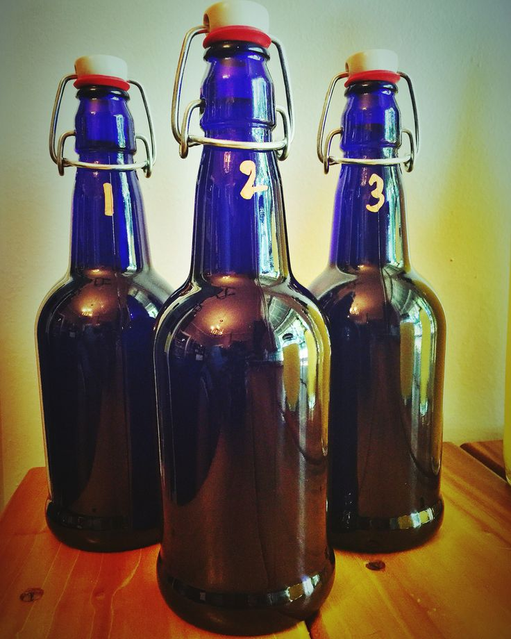 4 August 2016  Grolsch bottles. I like them. I mean, they're aiiight. 🤔 I will say these little suckers hold a lock that Alcatraz would be proud of. I am still learning to work with the lids efficiently-I'm hoping it gets better with time.   #bottles #brewing #booch #kombucha #poppinbottles #grolsch #fermentation #health #healing #nourish #probiotics #bluebottle #homesweethome #lovemylife #musings