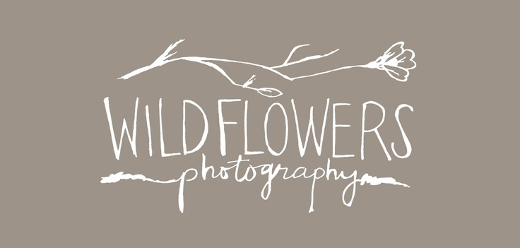 wildflowers photography logo - Google Search