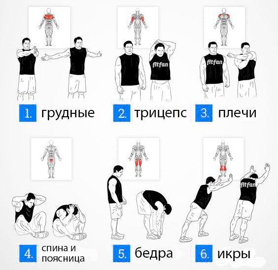Основные упражнения на растяжку для разминки и заминки на тренировке.    #растяжка #разминка #заминка