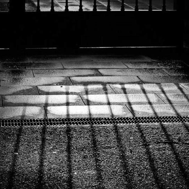Shadows @Rolland Garros