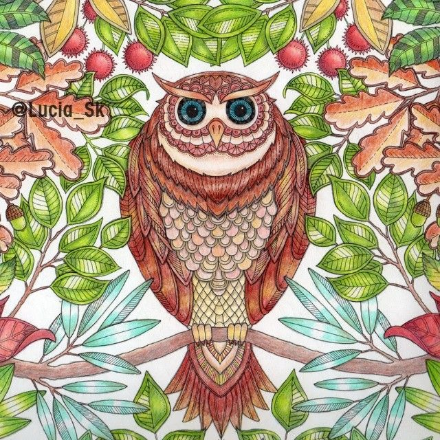 Owl from Secret Garden #colouringbook #coloringbook #adultcoloringbook #livrosdecolorir #arteterapia #secretgarden #jardimsecreto #jardinsecreto #tajomnazahrada  #eljardinsecreto  #johannabasford #maped #colorpeps #colorindo #coloreando #owl #buho #coruja #sova