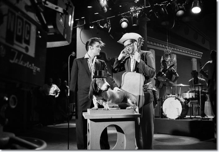 Steve Allen, and Elvis discuss in rehearsal how Elvis will sing his song, Hound Dog, to a basset hound on a pedestal wearing a top hat. Allen wanted to avoid the controversy that occurred after Elvis swiveled his hips on 'The Milton Berle Show'. (NBC Television, Hudson Theater, New York City, July 1, 1956).