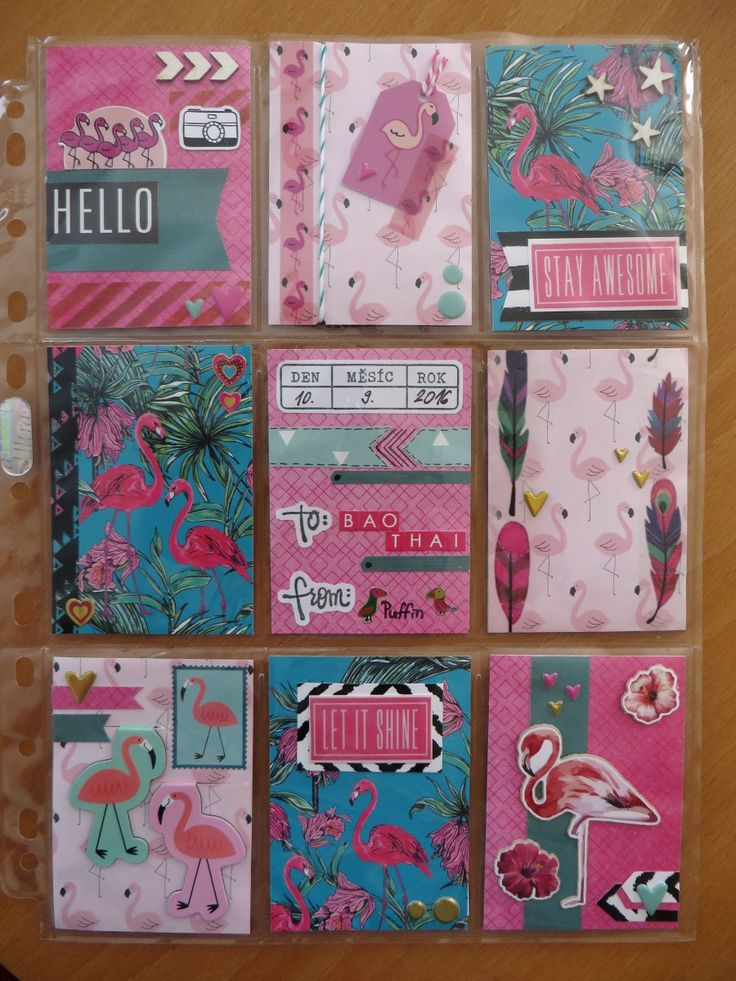 To baothai (front) - Flamingos! - Pocket letter 42
