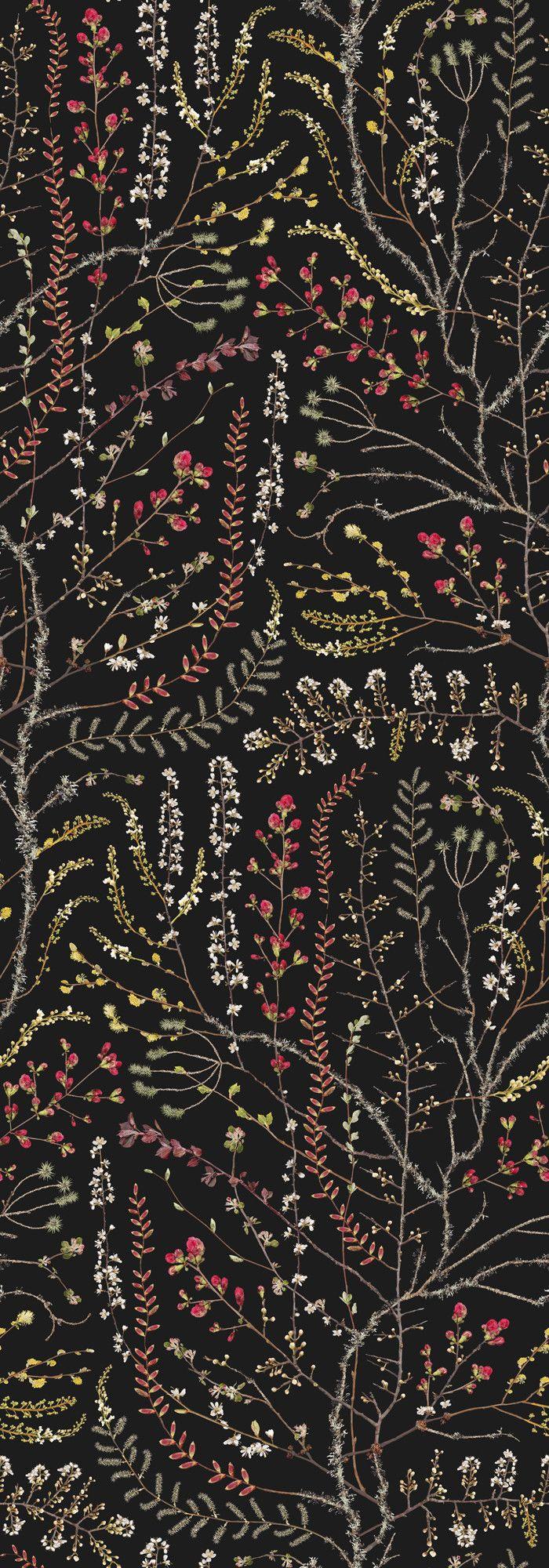 Autumn Sprout – Black – Fototapeten & Tapeten – Photowall