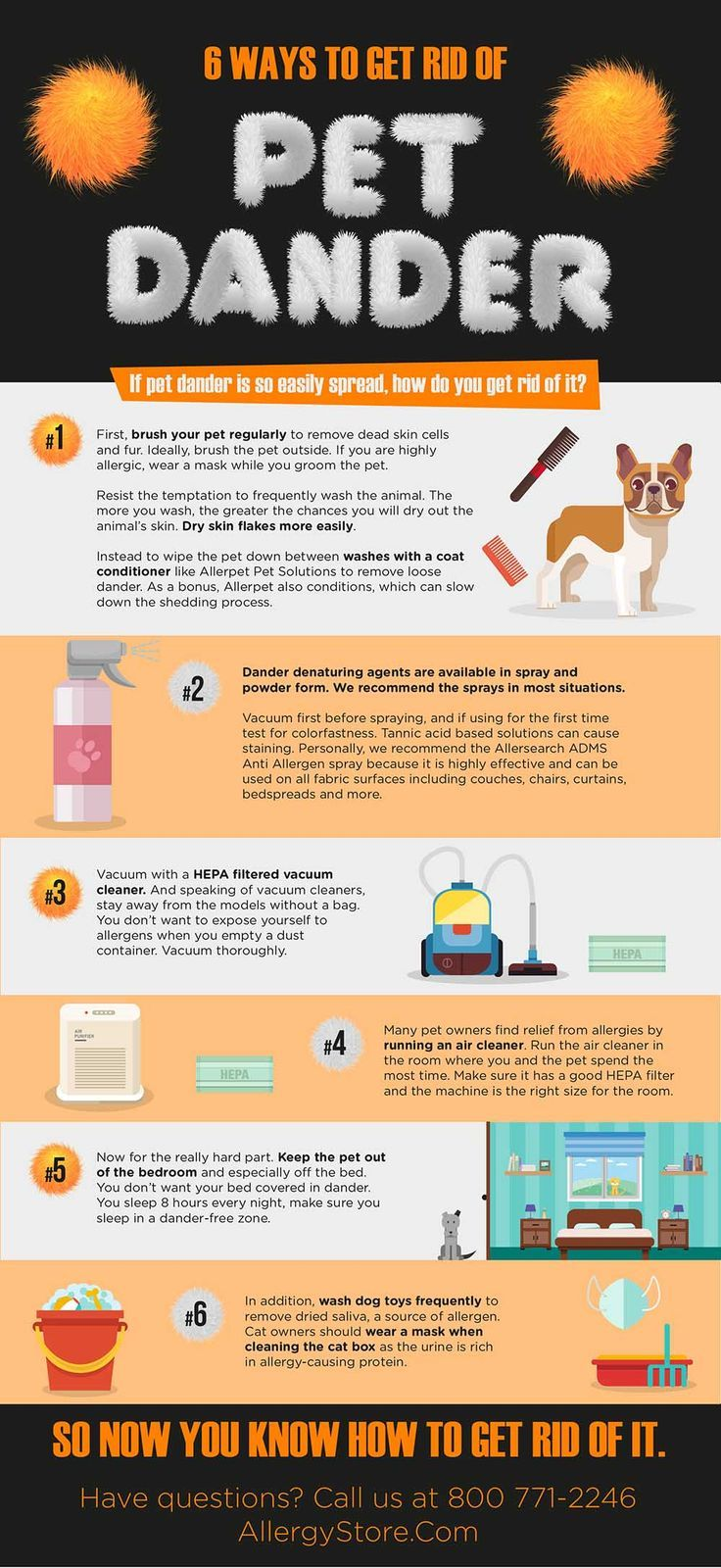 What Is Pet Dander And How Do You Get Rid Of It Pet Allergies Pet Dander Cat Allergies