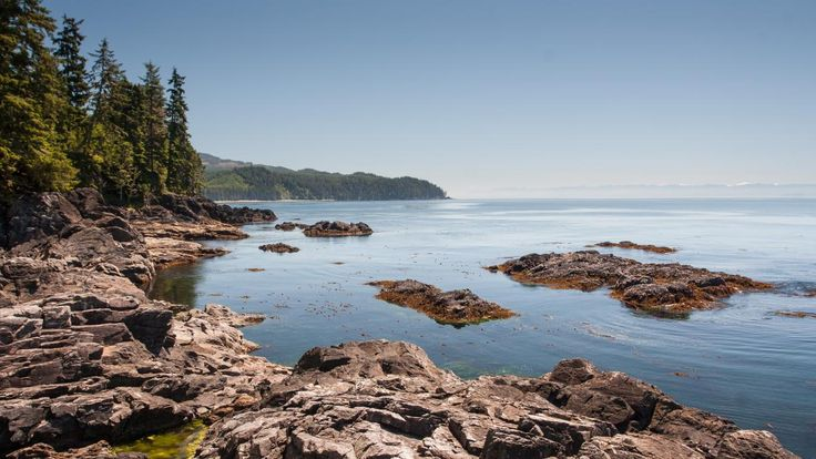 Canada til lands, til vands og i luften   Oplev Canadas smukke natur