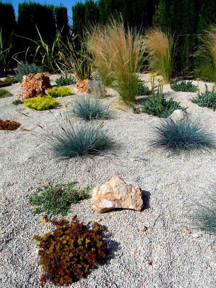 jardin sec avec des graminées d'ornement Nassella, Stipa, Sedum et Fétique de Gautier