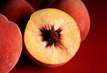 #peach #Pfirsich #Persiko