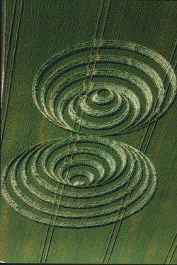 Crop Circles http://calgary.isgreen.ca/