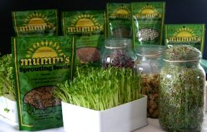 Welcome to Mumm's Sprouting Seeds Canadian Web Store