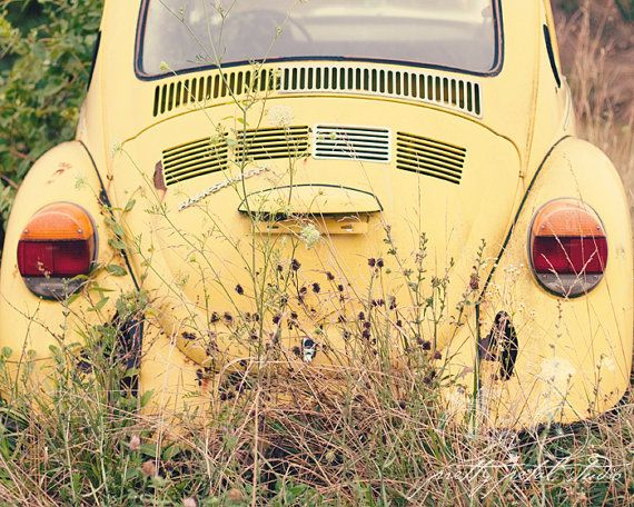 Fine Art Photograph, Vintage Yellow VW Beetle, Love Bug, VW Bug, Wildflowers, Boho, Whimsical Art, Hippie, 1960s, Retro Art, 8x10 Print