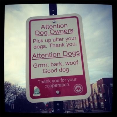 attention dog owners