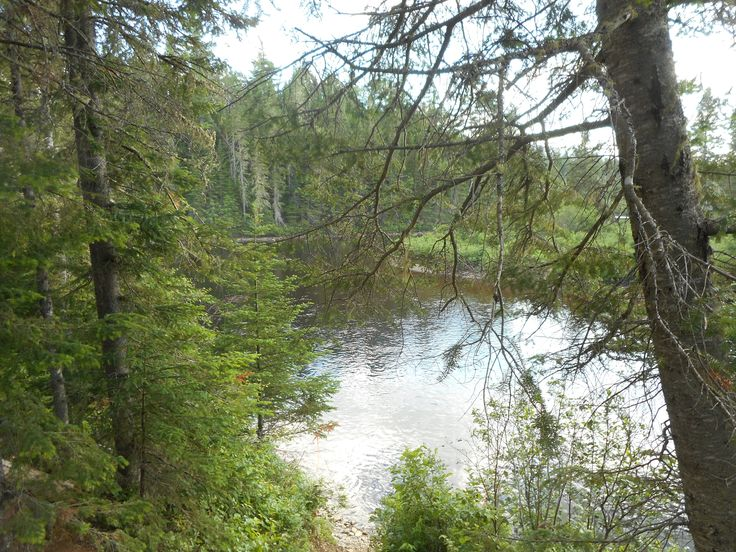 Devils Elbow on the Nepisiguit River Northern NB