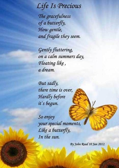 famous poems about life - Google Search