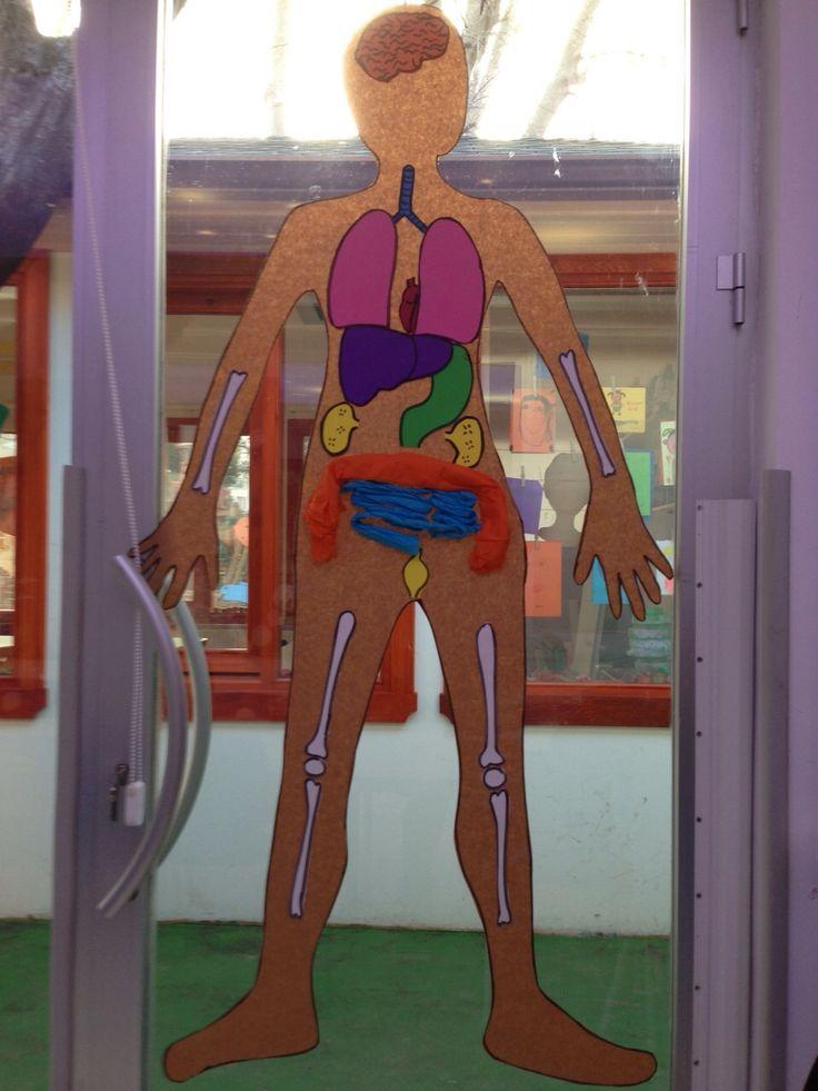 Vücudumuz 2