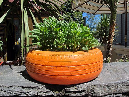 Tyre garden by alistercoyne, via Flickr