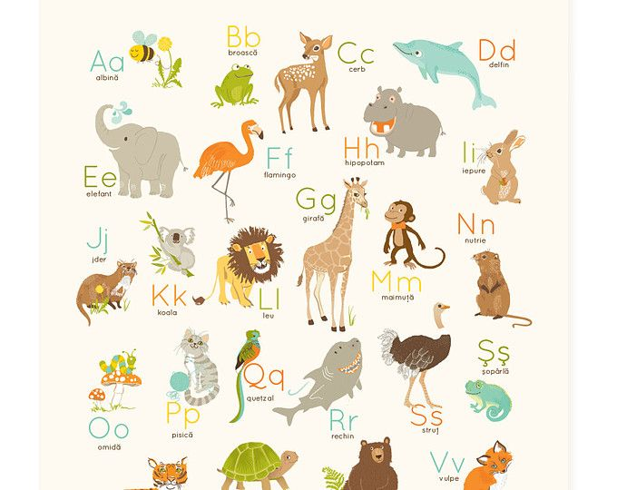 Pared de alfabeto rumano arte, Rumania para niños, decoración de la pared del cuarto de niños, animales ABC