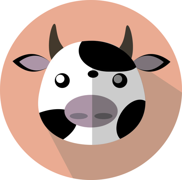 A darling littel cow