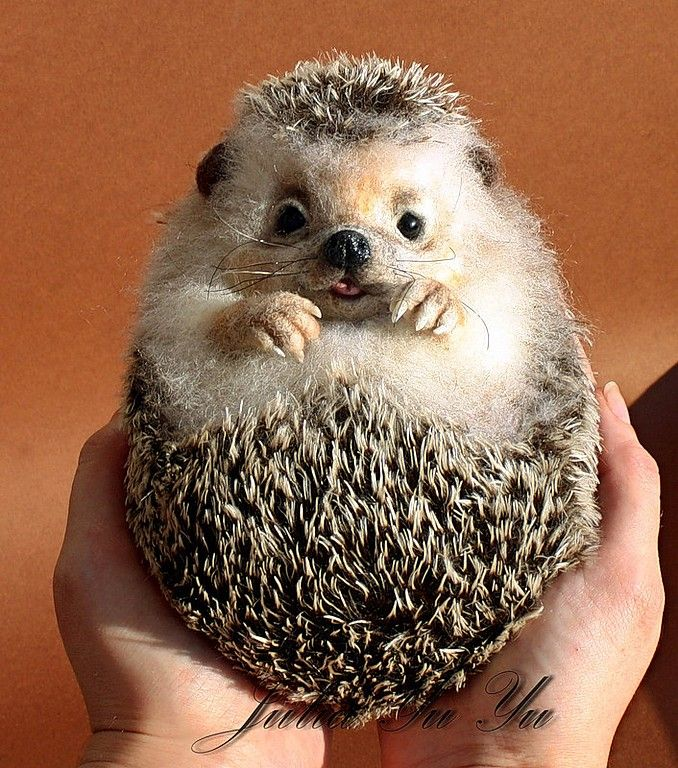 Stuffed Dog Toy That Looks Like A Hedge Hog
