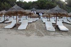 Turtle track through sunbeds on Makris Gialos   | check it out at wildlifesense.com