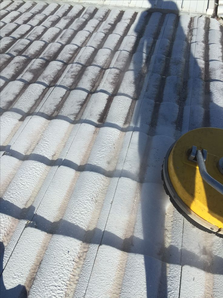 Roof cleaning for a painter in Brisbane.