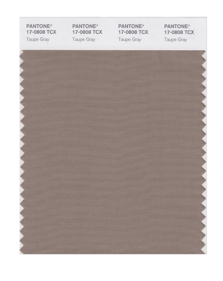 Pantone Smart Swatch 17-0808 Taupe Gray, use for trousses, skirts. If you are blonde (low contrast) also for coats, blazer, cardigan..