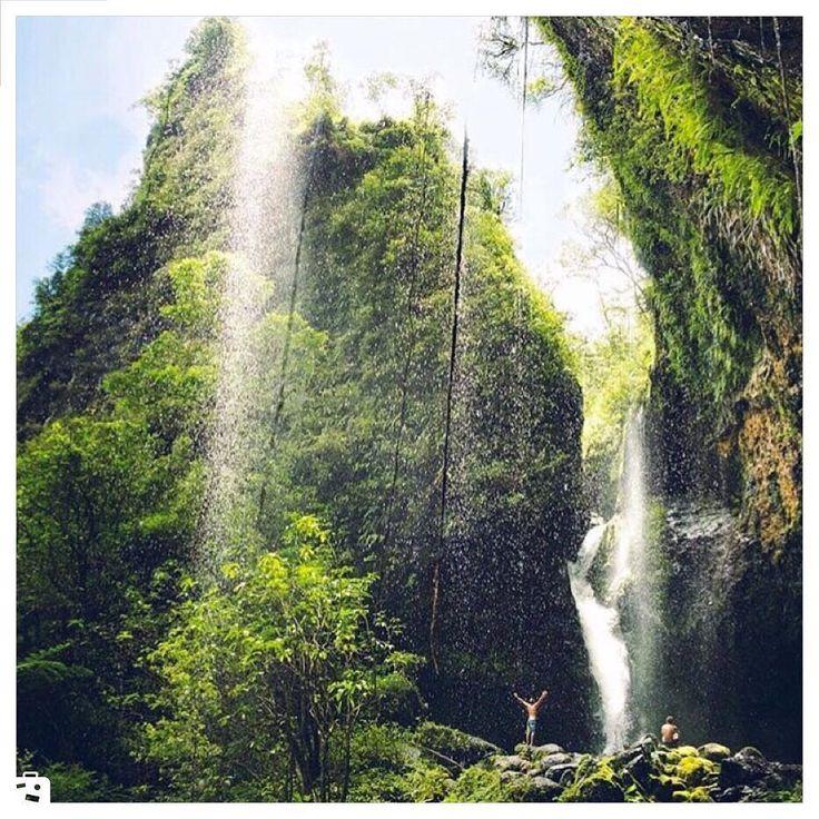 - -Hawaii  USAهاواييآمريكا . #usa #hawaii #chamedoon #wiki #wikievent  #هاوايي #آمريكا  #ويكي #ويكي_ايونت #چمدون  #كجا_بريم www.wikievent.net