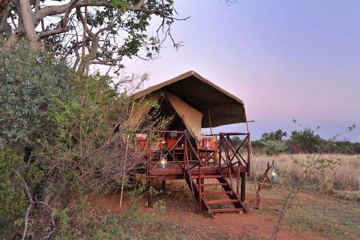 Kwafubesi, Mabula Game Reserve, Limpopo, South Africa