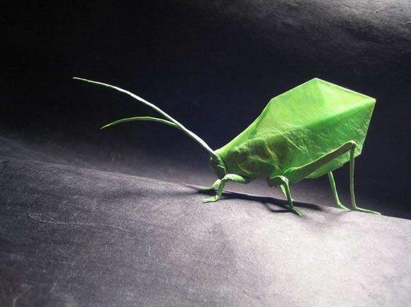 Insecto realizado en papel.