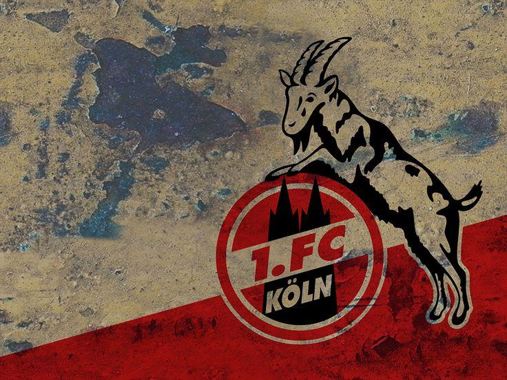 1. FC Köln - Fussball - Bundesliga - Rot-Weiß