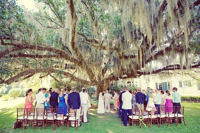 i dream of being married under a weeping willow and sunflowers :]