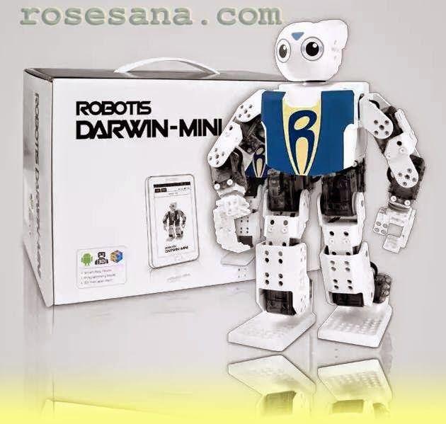 2R Hardware & Electronics: Darwin mini