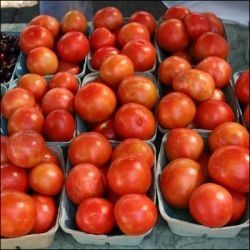 13 Tips for Growing Better Tomatoes - Remove lower leaves - Remove stems that grow between stalk and mature stem - Use mulch - Try not to water leaves - Add 1 tbsp Epsom salt per gallon of water every 2-3 weeks - Marigolds prevent nematodes - Garlic increases flavor (plant nearby or add crushed garlic to water)