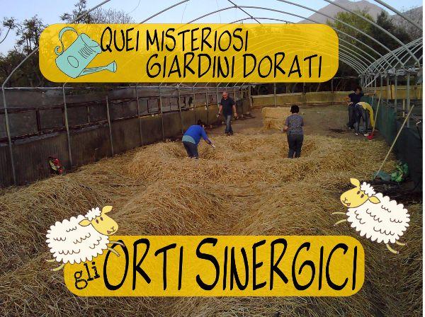 L'Orto Sinergico… com'e' fatto?! Scopriamolo insieme! #agricolturasinergica #ortosinergico www.ecopasticci.it