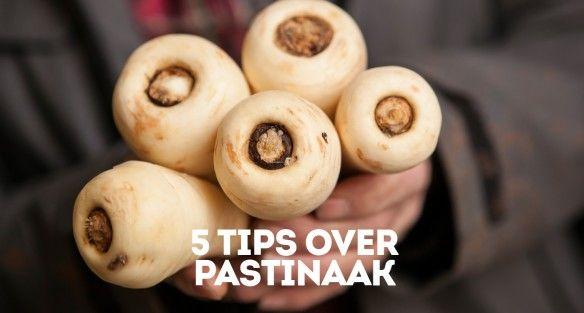 Op Verse Oogst las ik deze interessante blog over: 5 tips over pastinaak. Blog ook mee via Verse Oogst!