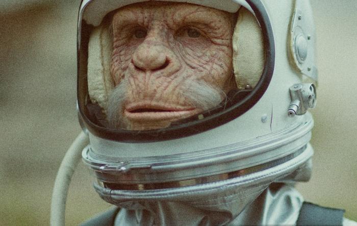 Space Monkeys.