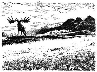 krajina v dobe ledove. Zde se mi libi prvky v popredi ktere postupne zanikaji v detailech a druhoplanove tmave hory s prajelenem.
