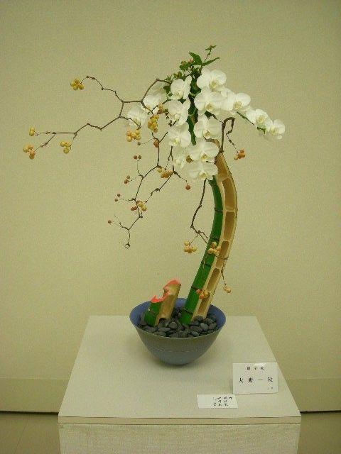 1000 images about ikebana on pinterest floral for Japanese flower arranging crossword clue