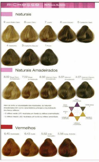 tabela de cores richesse Tonalizante Richesse by L'óreal