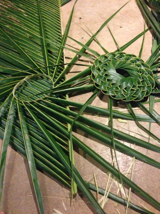 Palm frond hat making session for a friend   Tresser des feuilles ...