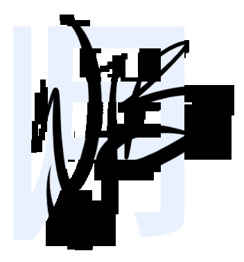 WJB - Portfolio