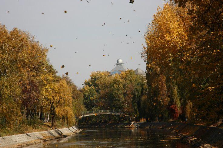 Timisoara European Best Destinations Copyright B7sebrain #Timisoara #Romania #Travel #Europe  #ebdestinations @ebdestinations