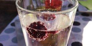 Simpel velkomstdrink uden alkohol, men med en skøn smag.