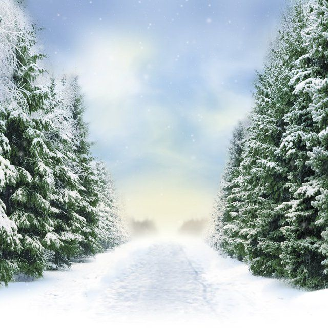 Frozen Backdrop Frozen Theme!! – Birthday Party Themes