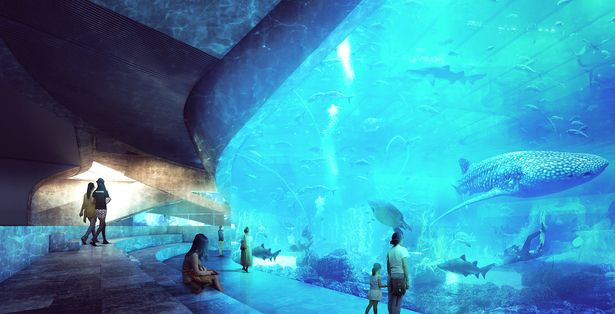 Qingdao Aquarium | Preliminary Research Office | Archinect