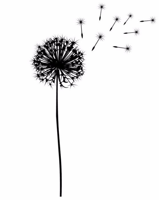 carte et papier, carte condoléance, carte amitié, carte décès, condoléance idée texte, souvenir, malheureux, famille, silhouette de fleurs, silhouette de pensée, scrapbooking, original