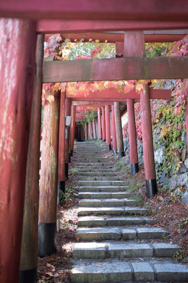 Guide To Visiting Mount Koya Koyasan Boutique Japan Aesthetic Japan Japanese Landscape Japan Travel