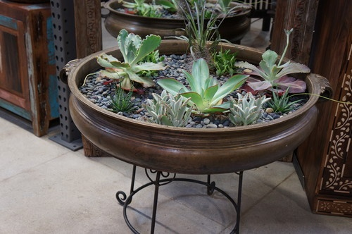Plants, Pots And Indoor Fountains
