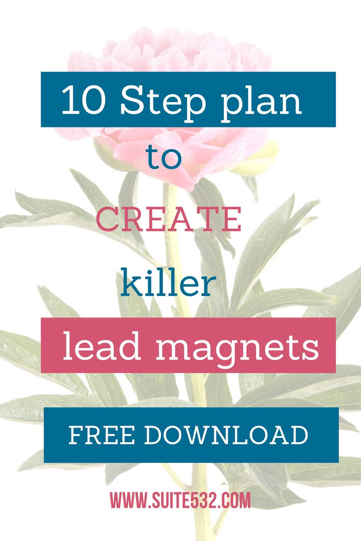 Free Checklist And Guide On How To Create And Promote Your Irresistible Lead Magnet - suite532   Business Coaching & Online Marketing